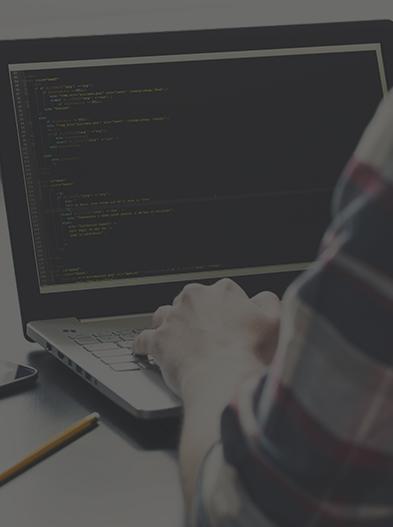 Программист .NET